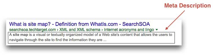 Meta Description Example
